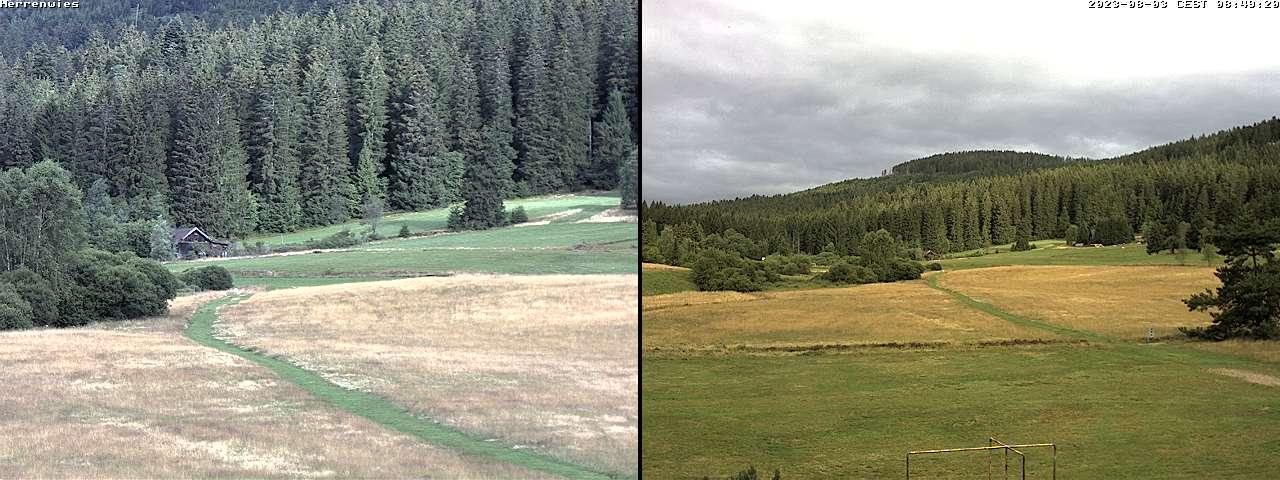 Webcam der Gemeinde Herrenwies / Forbach